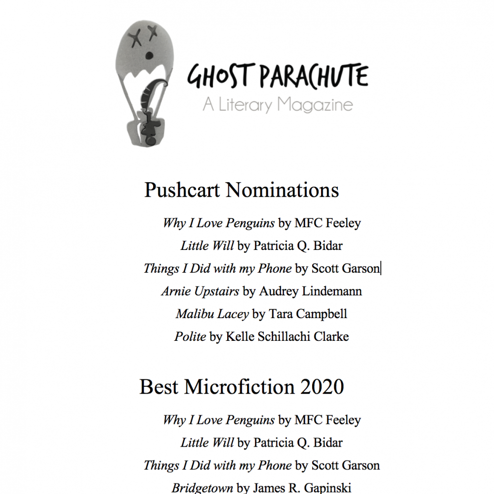 Pushcart Prize and Best Microfiction Nominations