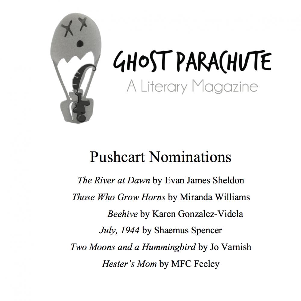 Pushcart Prize Nominations
